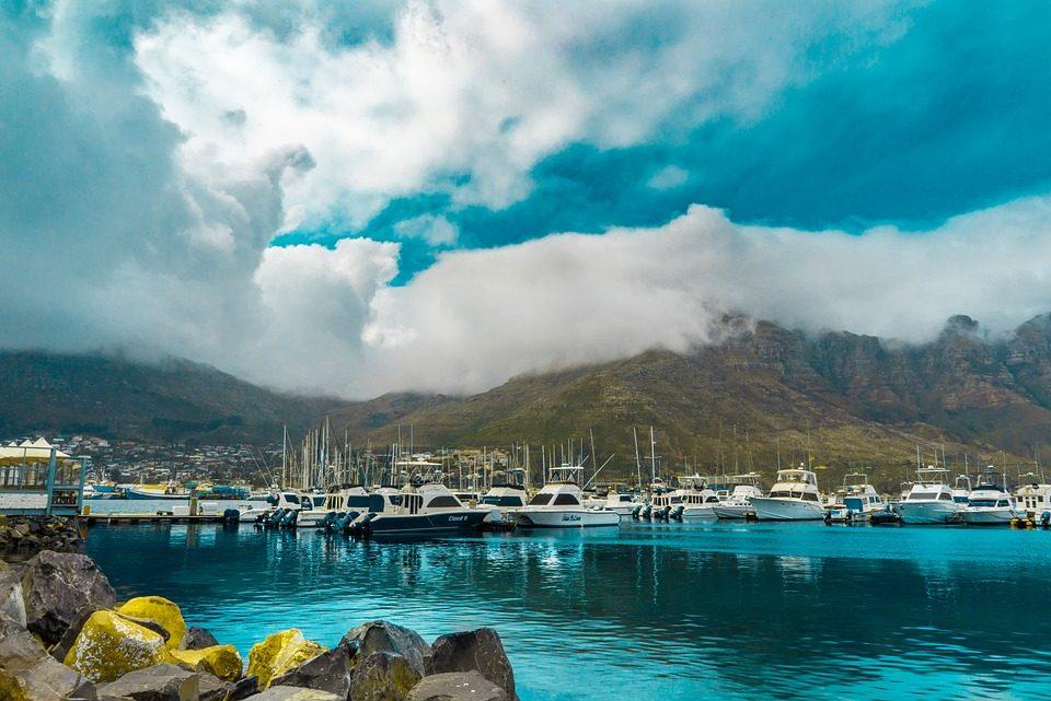 Quelques activités à privilégier lors d'un séjour en Afrique du Sud