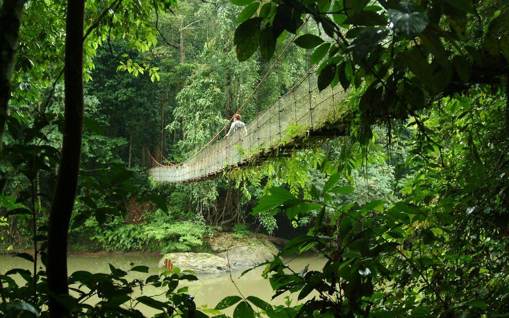 Voyager autrement en Malaisie : 4 lieux hors des sentiers battus à voir